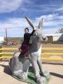My Trip to SantaFe
